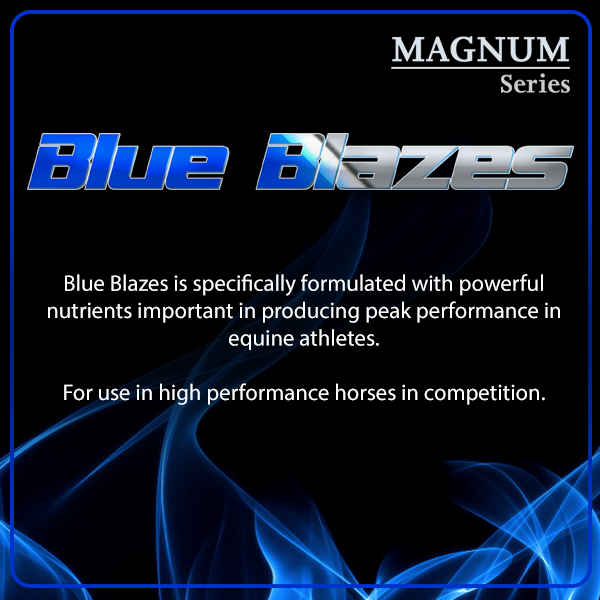 Blue Blazes daily supplement for Performance Horses from Oxy-Gen
