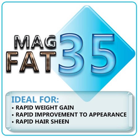 Mag Fat Daily Supplement from Oxy-Gen