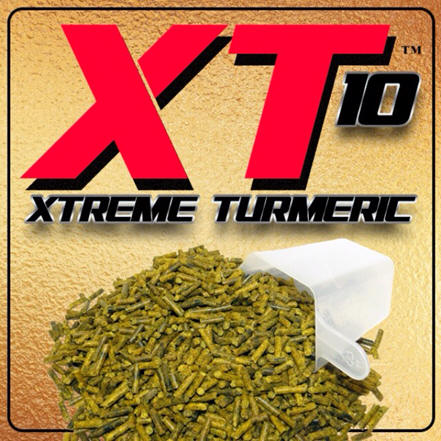 XT10 - Xtreme Turmeric by Oxy-Gen Lung Joint and Anti-Oxidant Supplement