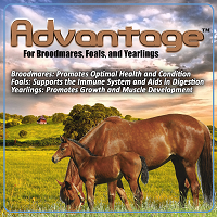 Advantage daily supplement for horses from Oxy-Gen